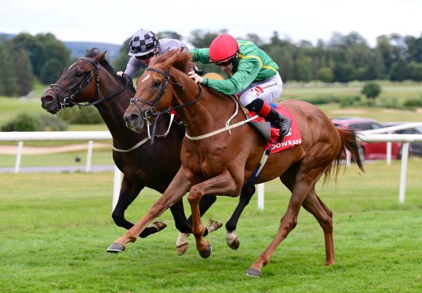 Due Reward Wins His Chase Debut