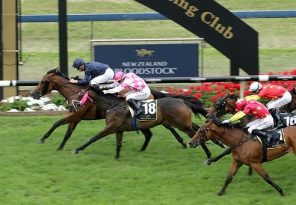Long Leaf (Fastnet Rock) winning the $1million Karaka 3YO Classic at Ellerslie