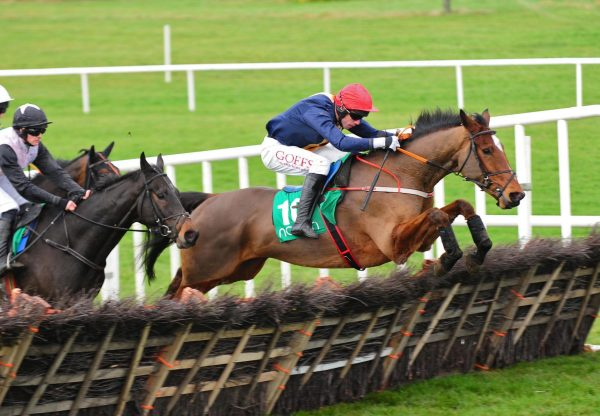 Longhouse Poet (Yeats) winning his maiden hurdle at Navan
