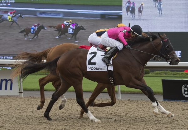Lookin To Strike (Lookin At Lucky) winning the G3 Ontario Derby at Woodbine