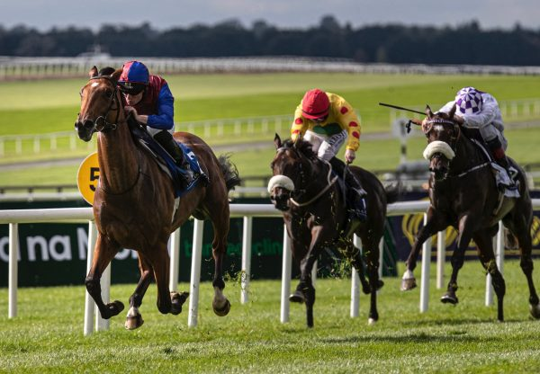 Luxembourg (Camelot) Impresses In The Group 2 Beresford Stakes at the Curragh