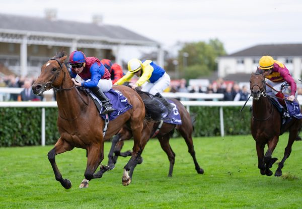 Luxembourg (Camelot) Lands The Group 1 Vertem Futurity Trophy Stakes at Doncaster