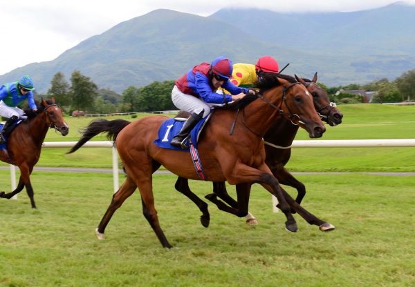 Luxembourg (Camelot) Makes A Winning Debut At Killarney
