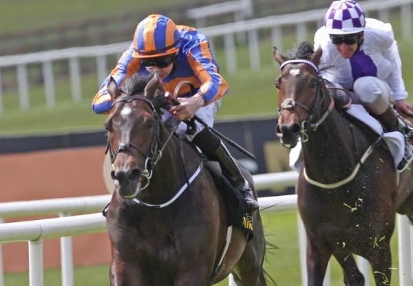 Magician (Galileo) winning the Irish 2000 Guineas at the Curragh