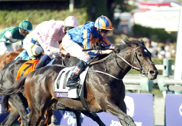 Magician winning the Breeders' Cup Turf