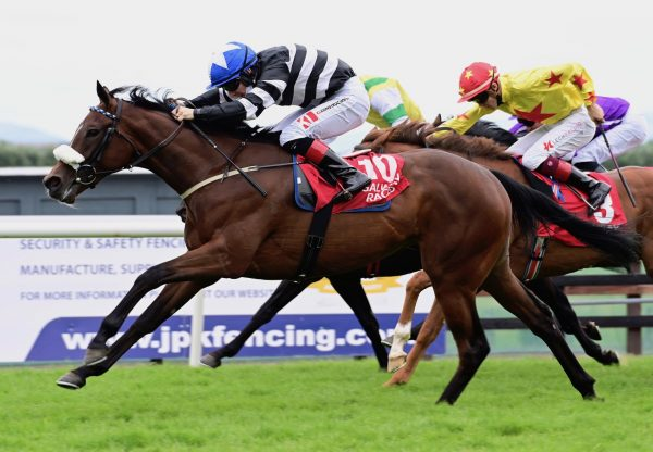 Found (Galileo) winning the G3 Kilfrush Stud Royal Whip Stakes at the Curragh
