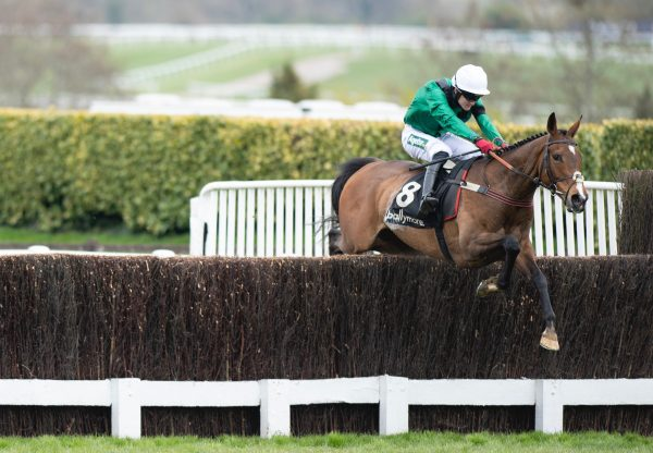 Manofthemountain (Mahler) Wins The Grade 2 Ballymore Silver Trophy at Cheltenham