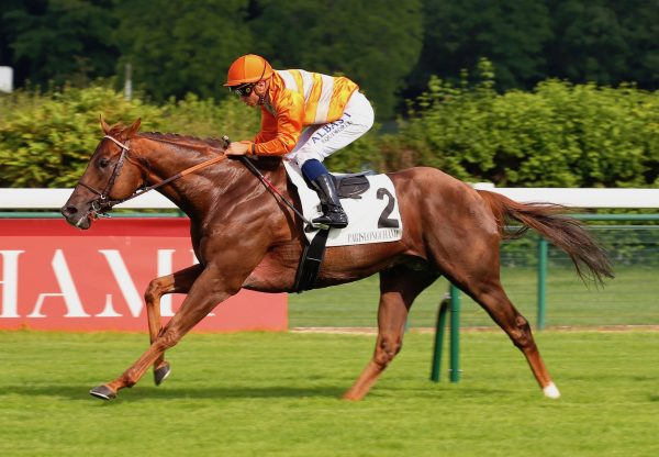 Marianafoot (Footstepsninthesand) Wins The Group 3 Prix De La Porte Maillot at Longchamp
