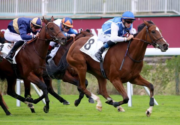 Matematica (Rock Of Gibraltar) winning the Listed Prix Matchem at Saint-Cloud