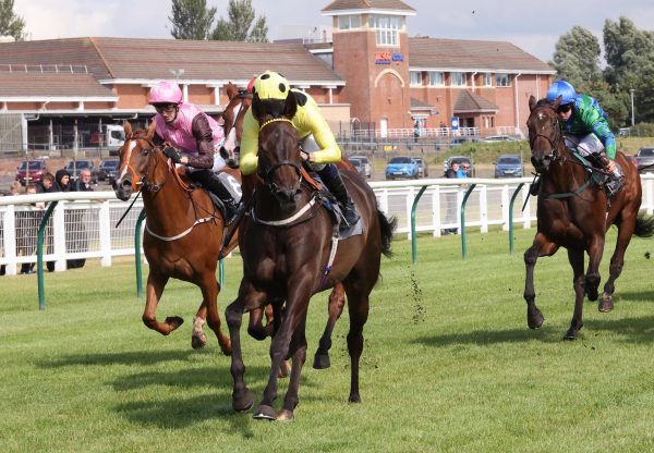 Merlins Lady (Camelot) Makes A Winning Debut At Ayr