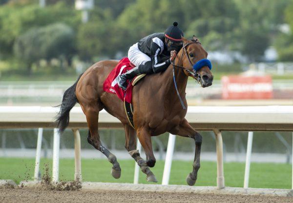 Merneith (American Pharaoh) Wins Gr.2 Santa Monica Stakes at Santa Anita