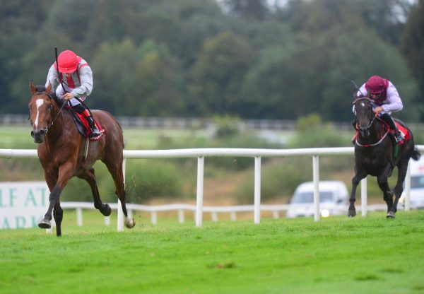 Metier Becomes The Latest Winner By Mastercraftsman Resized