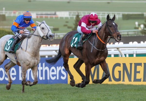 Milan Native (Milan) Wins The Kim Muir Chase at Cheltenham
