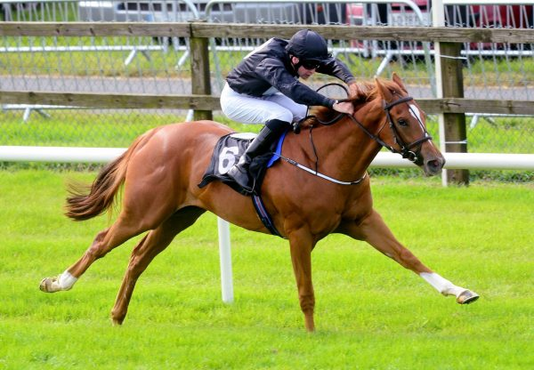 Millisle Becomes The Latest Winner By Starspangledbanner