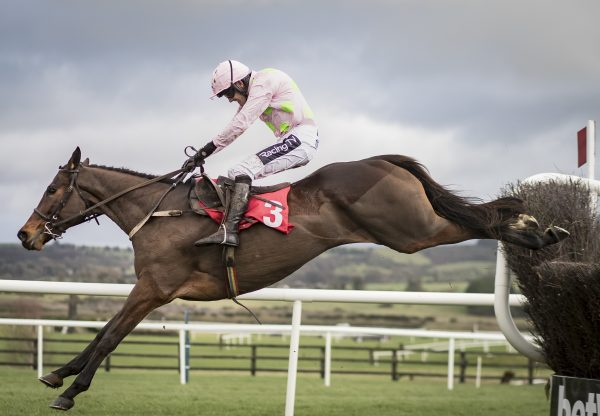 Min (Walk In The Park) winning the Gr.1 John Durkhan Memorial Punchestown Chase