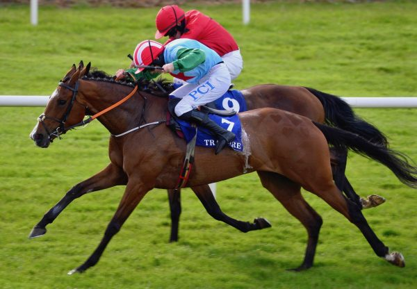 Miss Tempo (Milan) Wins The Mares Maiden Hurdle At Tramore