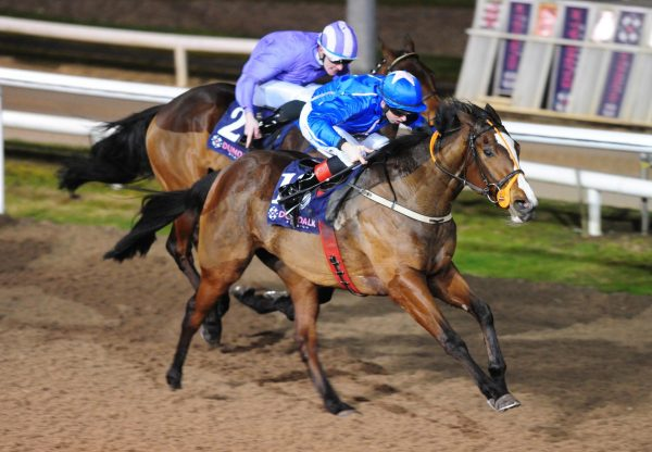 Moll (Camelot) Becomes The Latest Winner By Camelot
