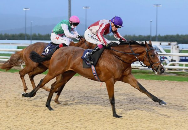 Morning Soldier Wins His Maiden At Dundalk 1