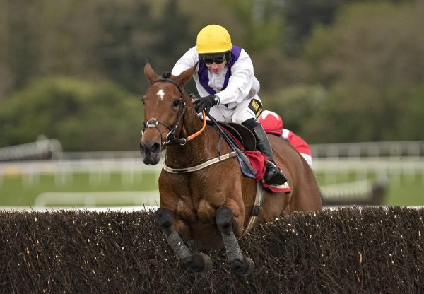 Moyhenna (Westerner) Wins At Punchestown