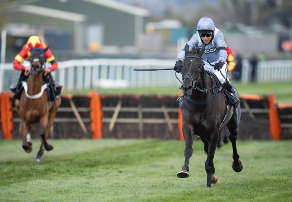 My Drogo (Milan) Wins The Grade 1 Mersey Novices Hurdle At Aintree