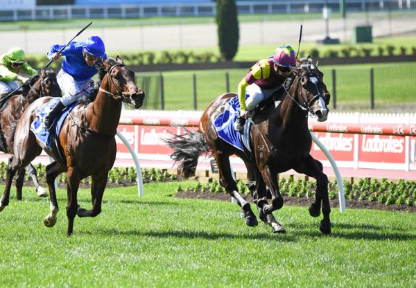 Mynumerouno (Vancouver) winning at Moonee Valley