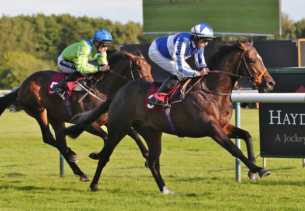 Mystery Power Becomes The Latest Winner By No Nay Never