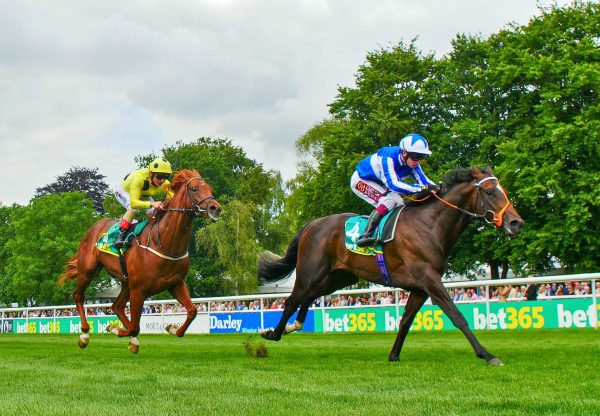 Mystery Power (No Nay Never) wins the Gr.2 Superlative Stakes at Newmarket