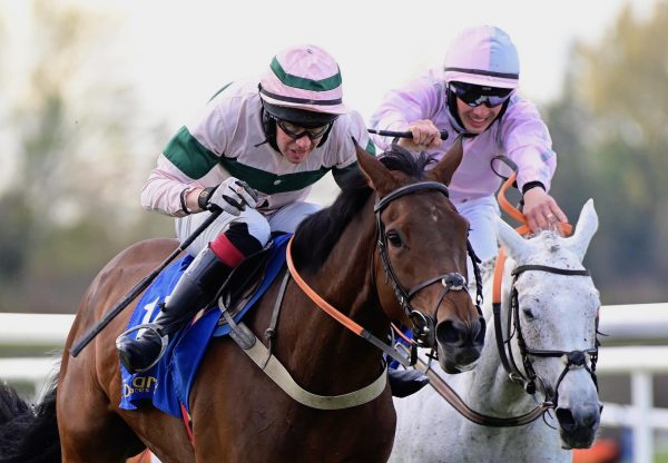 Speak In Colours Becomes The Latest Stakes Winner By Excelebration