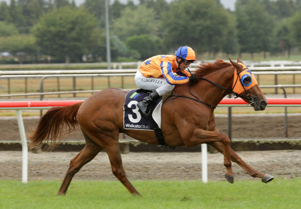 Need I Say More (No Nay Never) winning the Gr.3 Waikato Stud Slipper at Matmata
