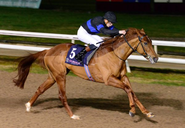 Never Before (No Nay Never) Wins A Dundalk Maiden