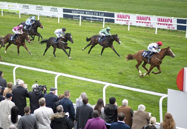 Newcomer Chasanda Becomes The Latest Winner By Footstepsinthesand