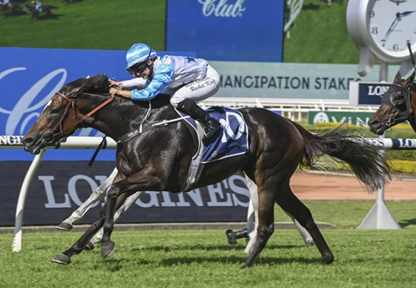 Nimalee (So You Think) winning the Gr.2 Emancipation Stakes at Rosehill
