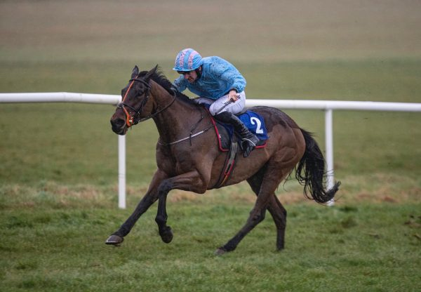 Pietralunga (Soldier Of Fortune) winning a maiden hurdle at Clonmel