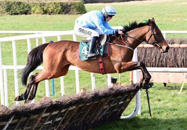 Noble Yeats Wins The Maiden Hurdle At Navan 1