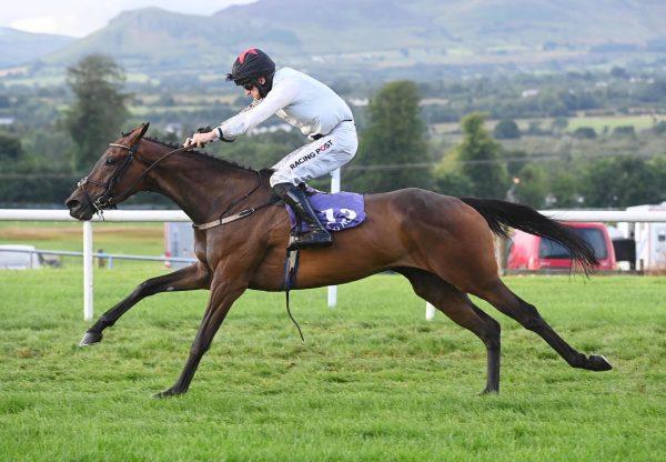 Nos Na Gaoithe (Yeats) Wins The Mares Bumper At Sligo
