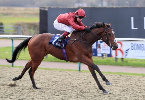 Ocean Road (Australia) Wins The Fillies Novice Stakes At Lingfield
