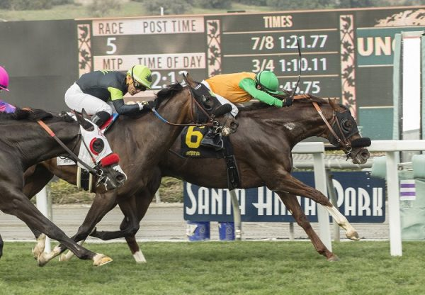 Om (Munnings) winning the G3 Thunder Road Stakes at Santa Anita
