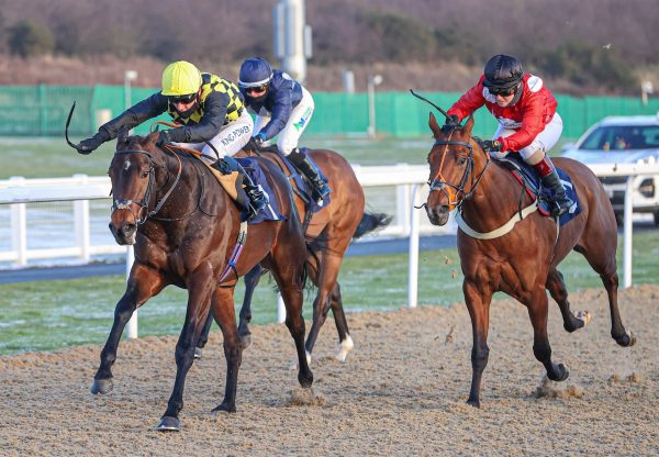 Oo De Lally (Vadamos) Wins At Newcastle