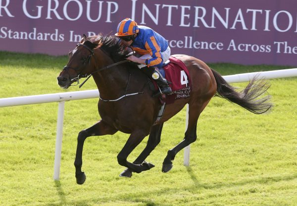 Order Of St George winning the Irish St Leger