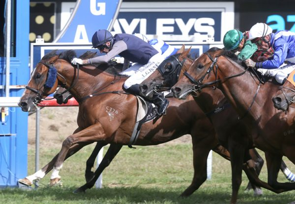 Packing Rockstar (Fastnet Rock) winning the Gr.2 Japan Trophy at Tauranga