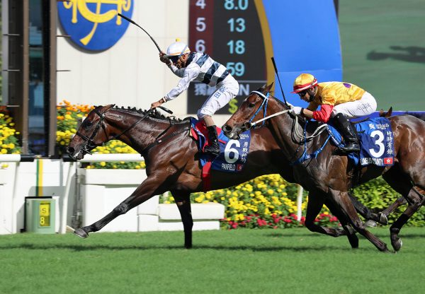 Panfield (Lookin At Lucky)  winning the Gr.1 Chater Cup