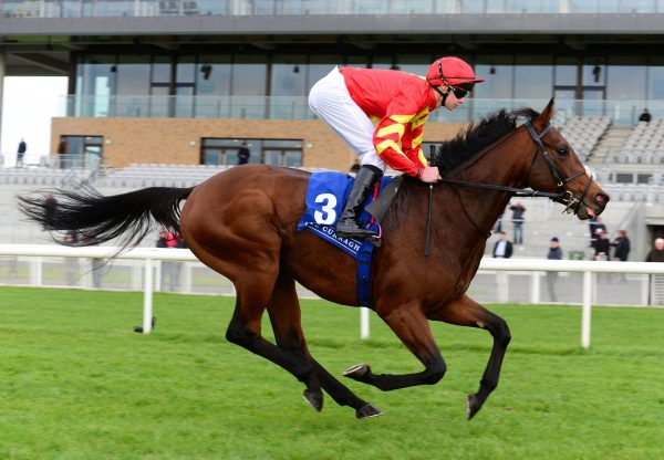 Patrick Sarsfield Becomes The Latest Winner By Australia