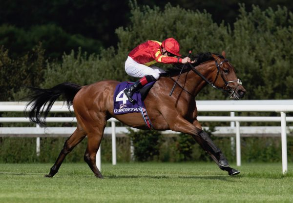 Patrick Sarsfield (Australia) Wins The Gr.3 Meld Stakes at Leopardstown