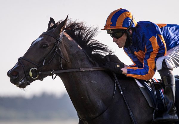 Peaceful (Galileo) Wins The Irish 1000 Guineas at the Curragh