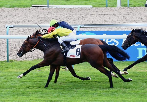 Penja (Camelot) Wins The Group 3 Prix De Psyche at Deauvile