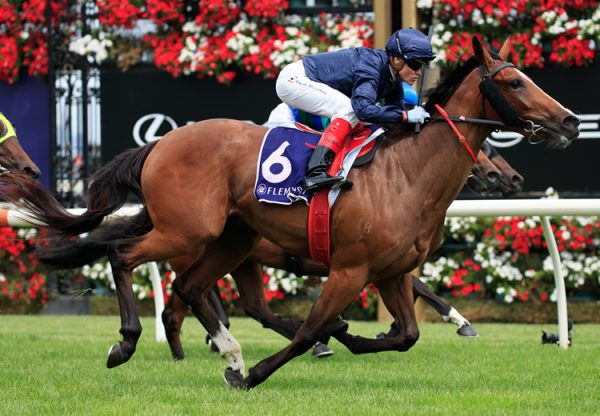 Personal (Fastnet Rock) winning at Flemington