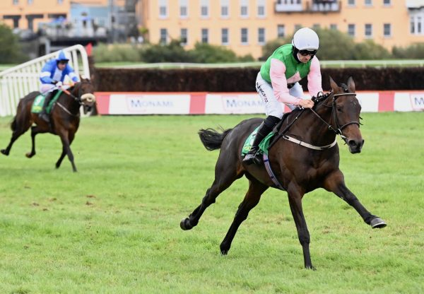 Pink In The Park (Walk In The Park) Makes A Winning Debut At Listowel