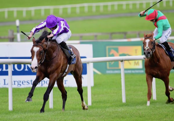 Point Lonsdale (Australia) Lands The Group 2 Futurity Stakes at the Curragh