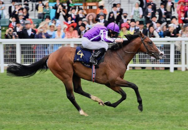 Point Lonsdale (Australia) Wins The Listed Chesham Stakes at Royal Ascot