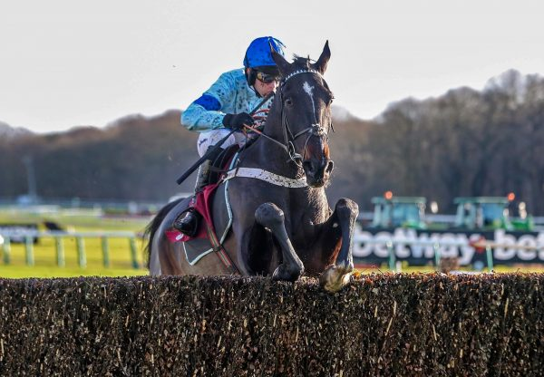 Precious Cargo (Yeats) Wins On Chase Debut at Haydock
